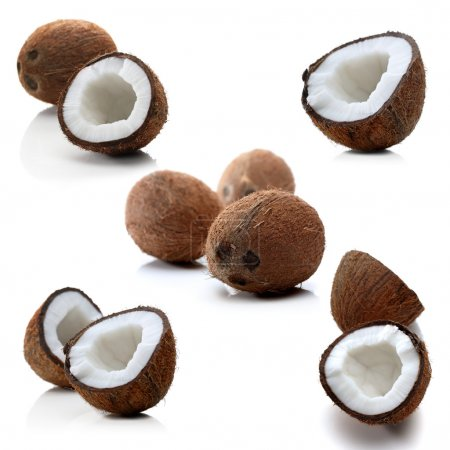 Coconuts on white backround