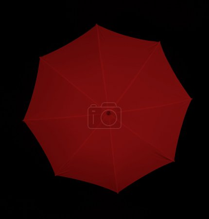 beautiful female umbrella