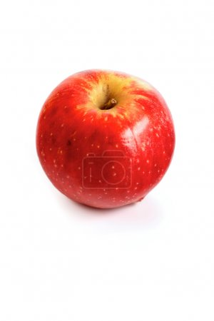 Red ripe apple