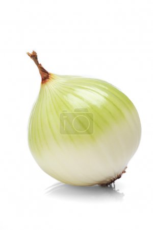 Photo for Close-up of fresh white onion on white background - Royalty Free Image