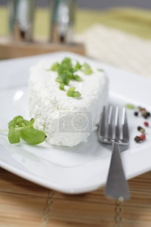 Polish cheese on white plate