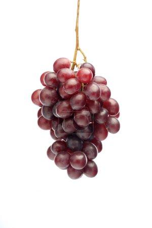 Fresh ripe Grapes