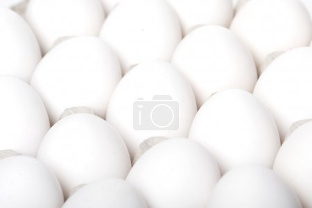 Close up of fresh white eggs