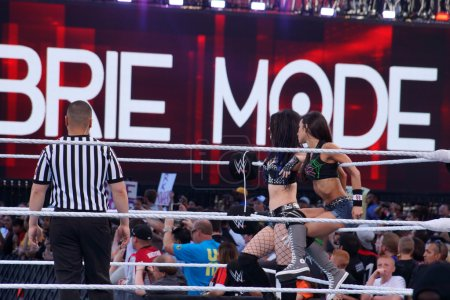 Tag team partners Diva's AJ Lee and Paige sit on ropes in ring
