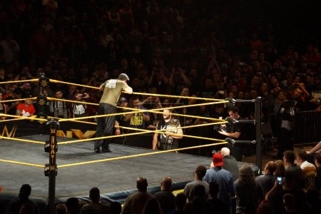 NXT Wrestle Sami Zayn leans over ring ropes as he talks to champ