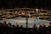 WWE Superstar legenda Triple H se usmívá úšklebek, když stojí