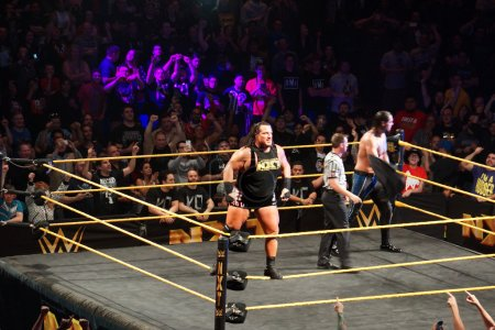 WWE NXT Superstar Rhyno stands on ring ropes before match