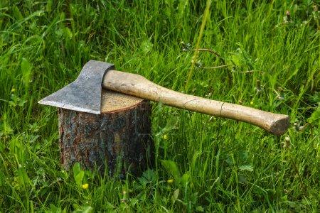 Axe on the stump.