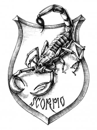 Illustration for Scorpion heraldry scorpio zodiacal sign - Royalty Free Image