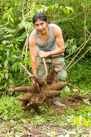 Indigenous Man With Tapioca Roots