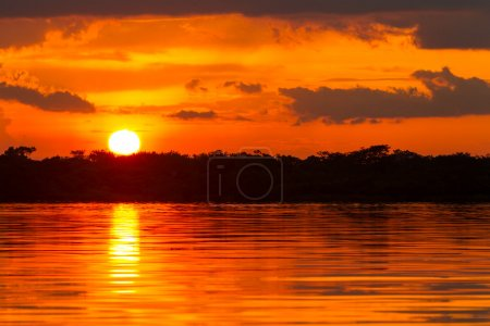 Dramatic Red Sky In Amazonian Jungle Ecuador