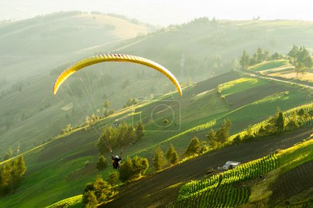 Paragliding In The Afternoon Light