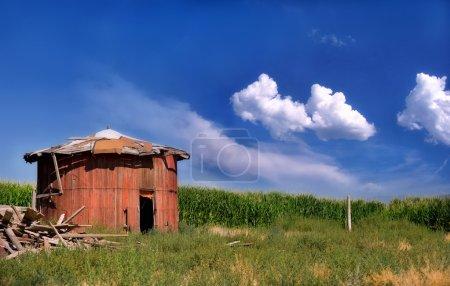 Barn next to cornfield