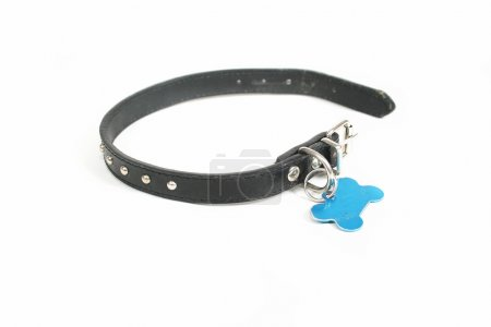 Dog collar with an id tag
