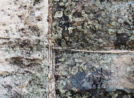 Photo pour Grunge fond texture murale - image libre de droit