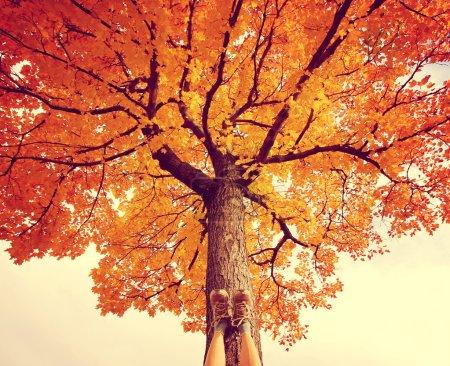 Female feet on tree trunk