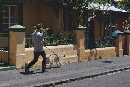 Pet owner walking his dog