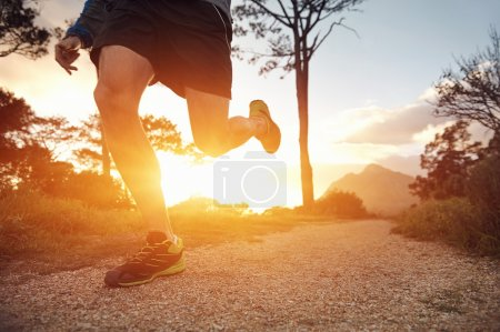 Photo for Trail runner man exercising for fitness at sunrise in mountains doing sport - Royalty Free Image