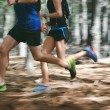 Couple running fast through the forest on trail ru...