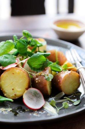 Summer potato salad with greens