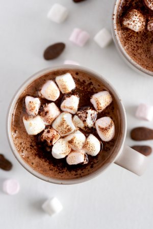 Cup of  chocolate drink with marshmallows