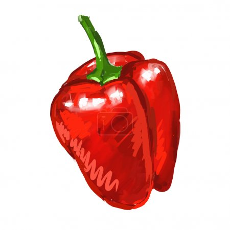 red pepper Vector illustration  hand drawn  painted