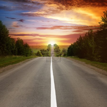 Photo for Road between trees and beautiful sunset - Royalty Free Image