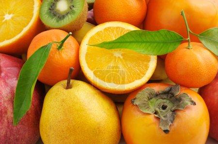 Photo pour Collecte de fond de fruits frais - image libre de droit