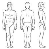 Illustration of male figure