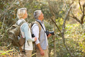 Couple bird watching in forest