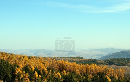 Photo for Beautiful view of mountains and trees - Royalty Free Image