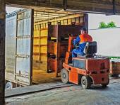 Forklift operator at work