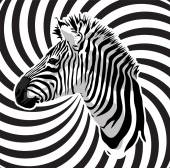 Zebra portrait on abstract strips background Vector illustration
