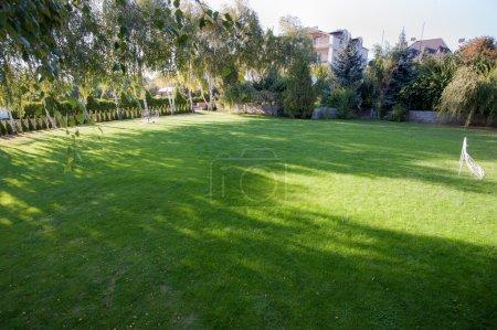 Foto de Jardín de verano verde exuberante - Imagen libre de derechos