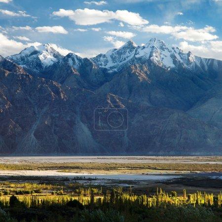 Nubra valley - Indian himalayas - Ladakh - Jammu and Kashmir - India