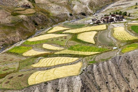 Skyumpata village - Beautiful village in Zanskar trek