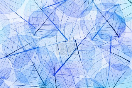 Blue Abstract Leaves Background