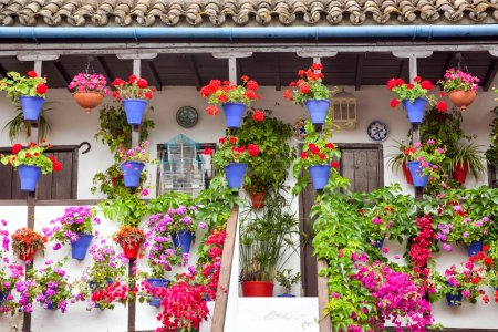 Typical Terrace (balcony) decorated Pink and Red Flowers, Spain