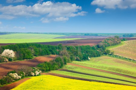 Countryside Colorful Fields and Sky Background - nature landsca