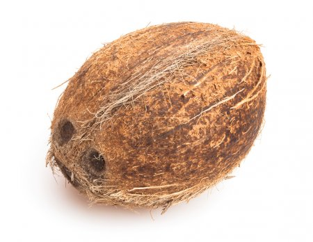 Whole  coconut isolated