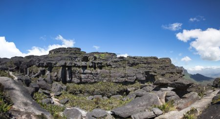 Panorama from the top of the Roraima Tepui with bl...