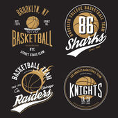 T-shirt design for basketball fans for usa new york brooklyn street team knights college team and chicago raiders with balls emblems Can be used for banner on sportswear or sport gear logotype