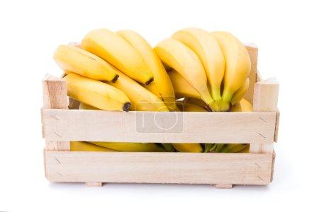 Foto de Plátanos maduros en caja de madera. Musa acuminata - Imagen libre de derechos