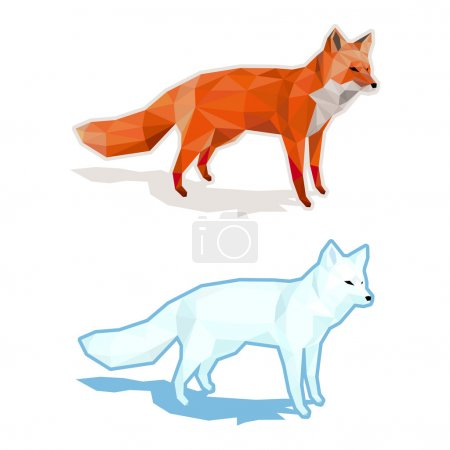 Illustration for Red and white foxes isolated on white with shadow - low poly vector illustration - Royalty Free Image