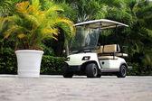 Golfový vozík