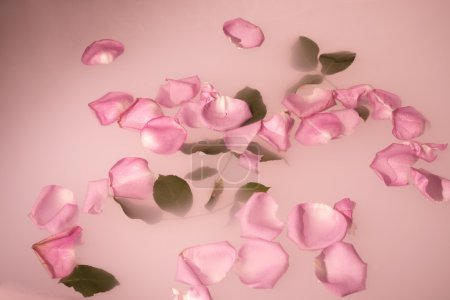 petals and leaves floating