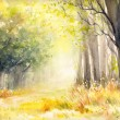 Sunny summer forest.Picture created with watercolo...