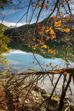 Photo for Landscape with forset lake in fall.Leopoldsteinersee,Styria,Austria. - Royalty Free Image