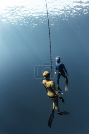 divers swimming under the water