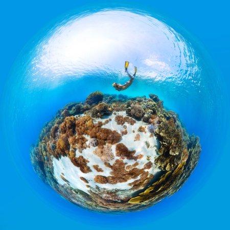 lady freediver exploring the sea floor